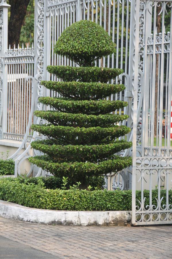 Garden Love in Saigon